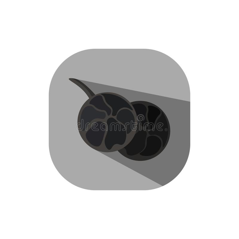 Flat design Peppercorn. Vector. Flat design. Icon of peppercorn vector illustration