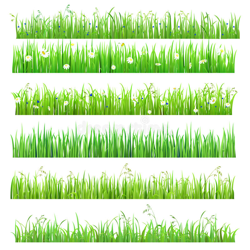 Vector flat isolated seamless grass lines with flower, butterfly royalty free illustration