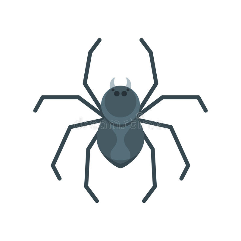 Vector flat style illustration of spider. Icon for web. Isolated on white background royalty free illustration