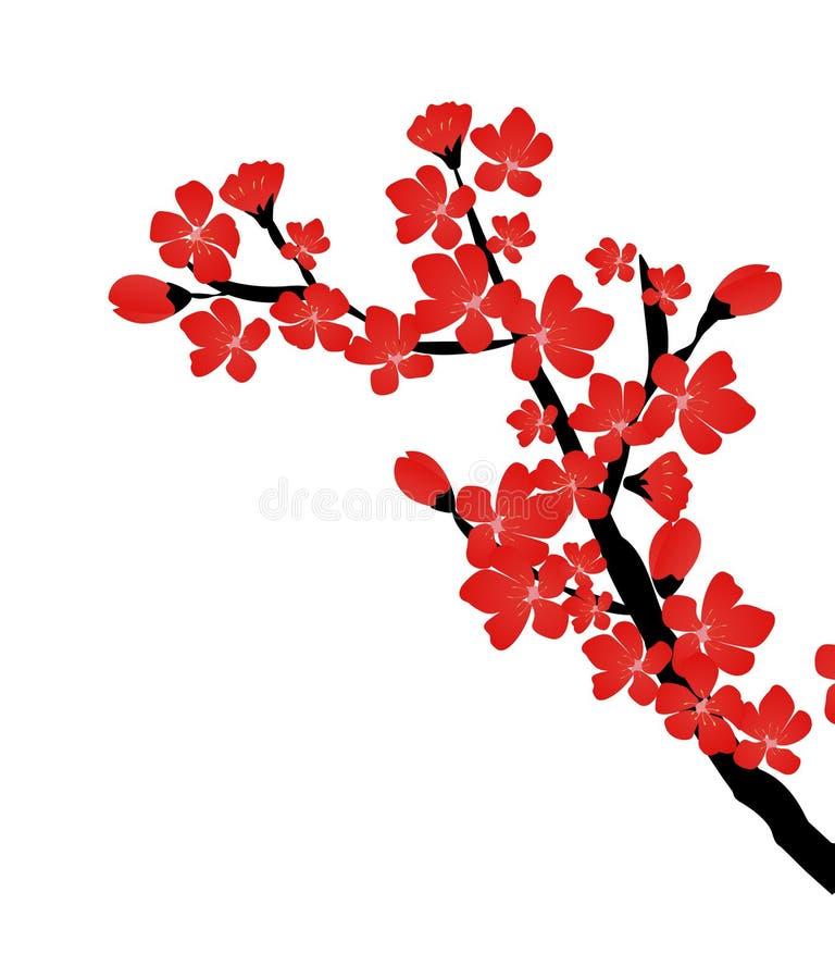 Vector floral abstracto de Sakura Flower Japanese Natural Background ilustración del vector