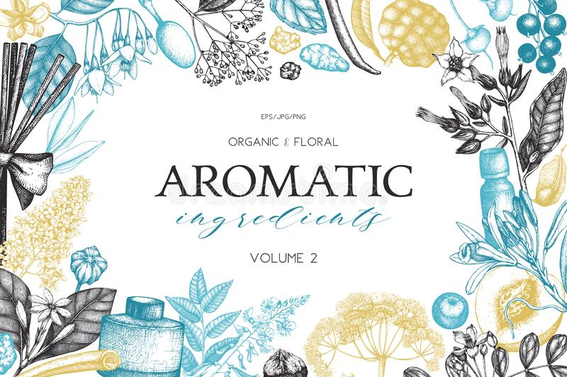 Vector floral background. Hand drawn Perfumery and cosmetics ingredients illustration. Aromatic and medicinal plant design. Vintag. E template vector illustration