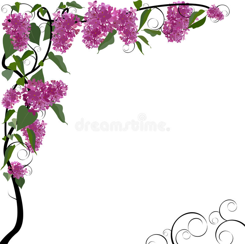 vector floral border stock vector illustration of abstract 14046542 rh dreamstime com floral border vector vintage floral border vector png
