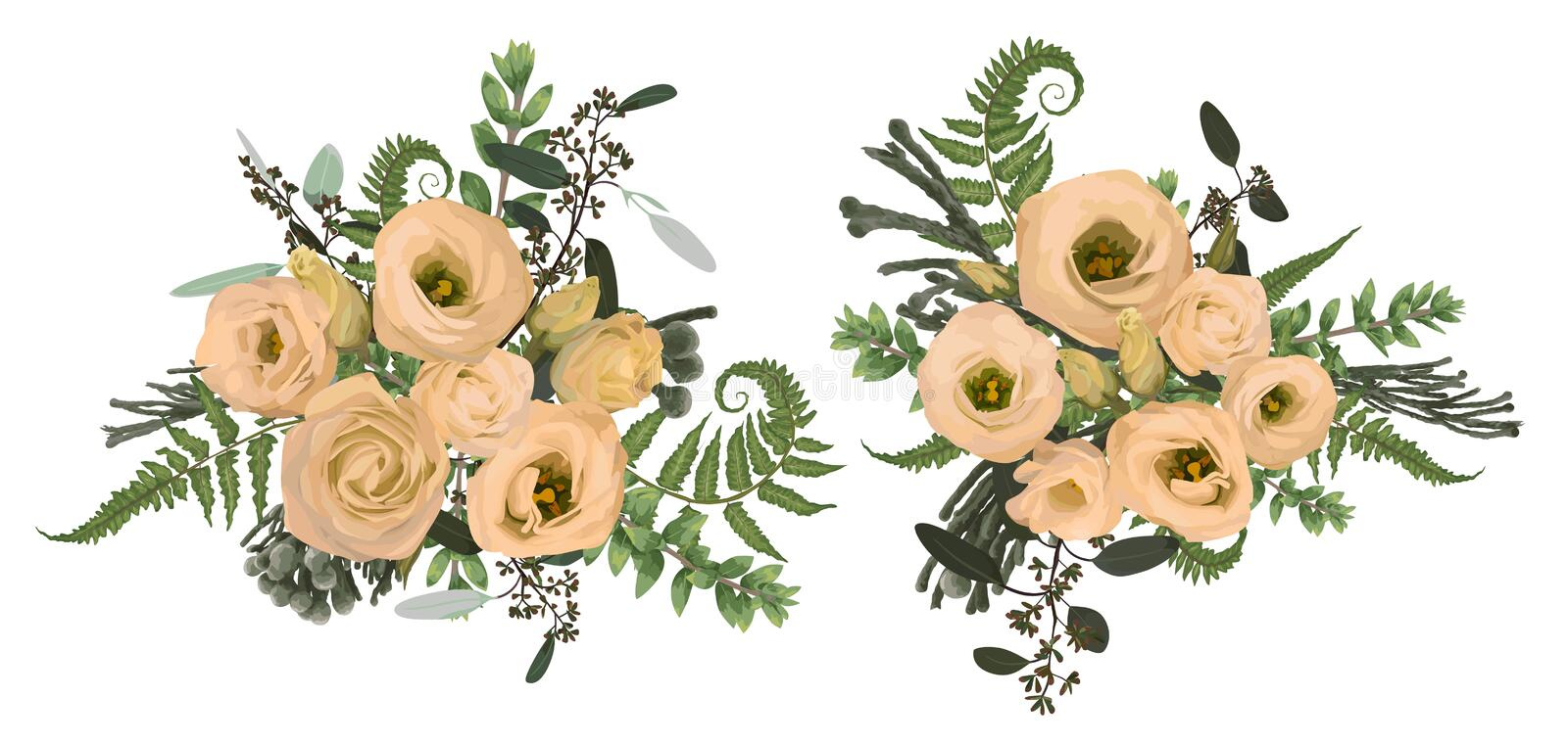 Vector floral bouquet design set, green forest leaf, brunia, fern, branches boxwood, buxus, eucalyptus and flowers eustoma cream. Watercolor style, herbs vector illustration