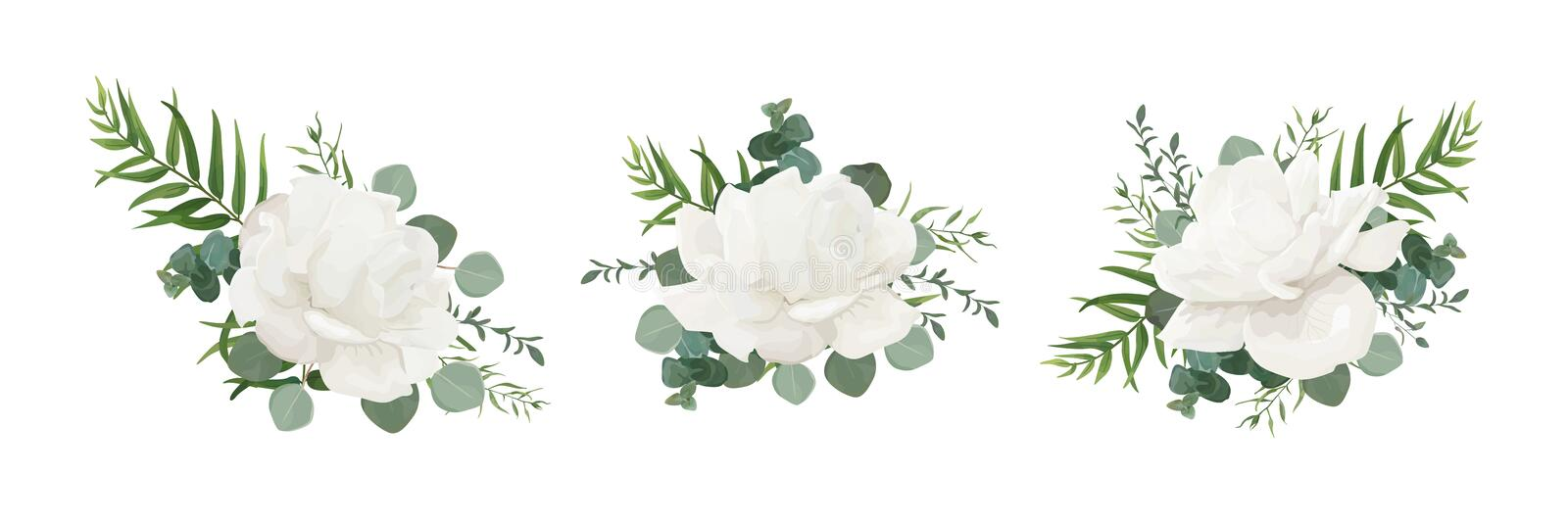 Vector floral bouquet set of garden white powder peony, Rose flo stock illustration