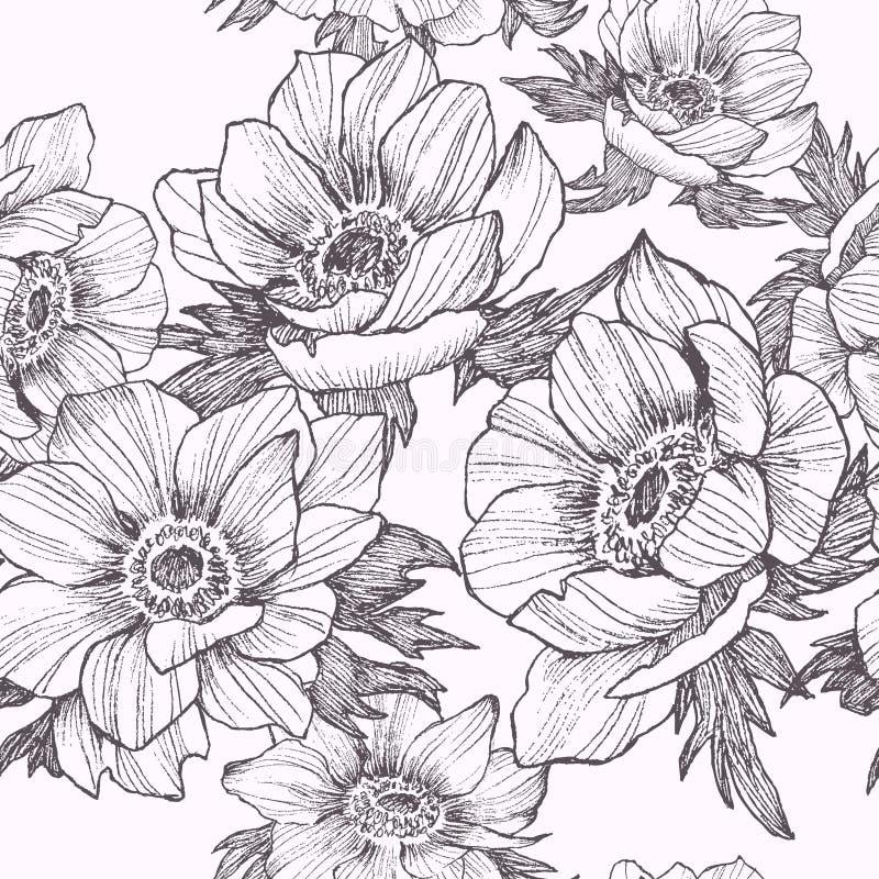 Vector vintage anemone seamless pattern. Hand drawn illustration. Great for wedding invitations, birthday, valentines royalty free illustration