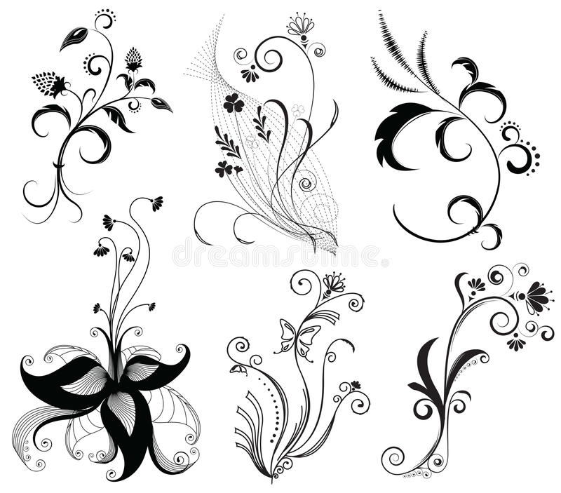 Vector floral decoration on white.