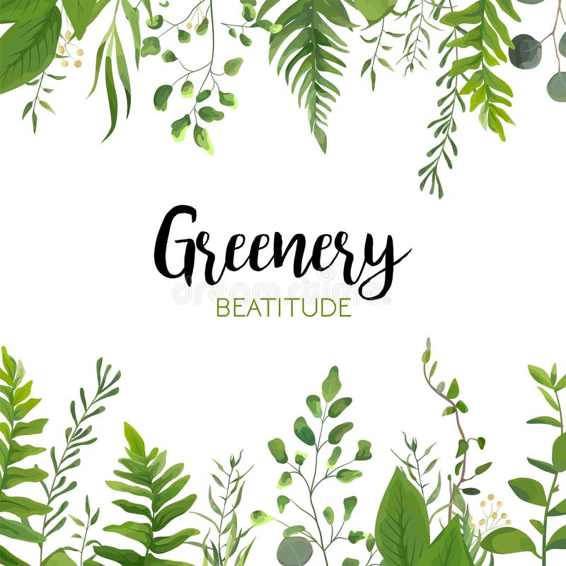 Vector floral greenery card design: Forest fern frond, Eucalyptus branch green leaves foliage herb greenery berry frame border. W royalty free illustration