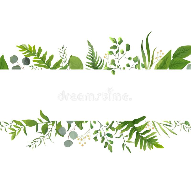 Vector floral greenery card design: Forest fern frond Eucalyptus. Branch green leaves foliage herb greenery yellow berries frame. Wedding invite poster royalty free illustration