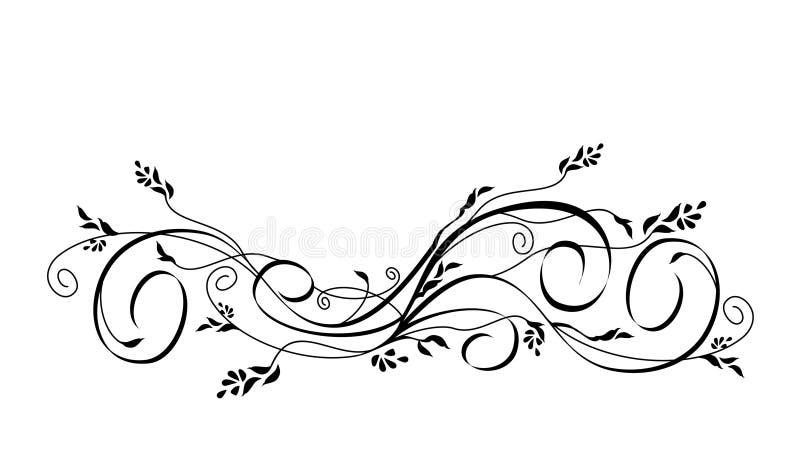 Vector floral scroll ornament vector illustration