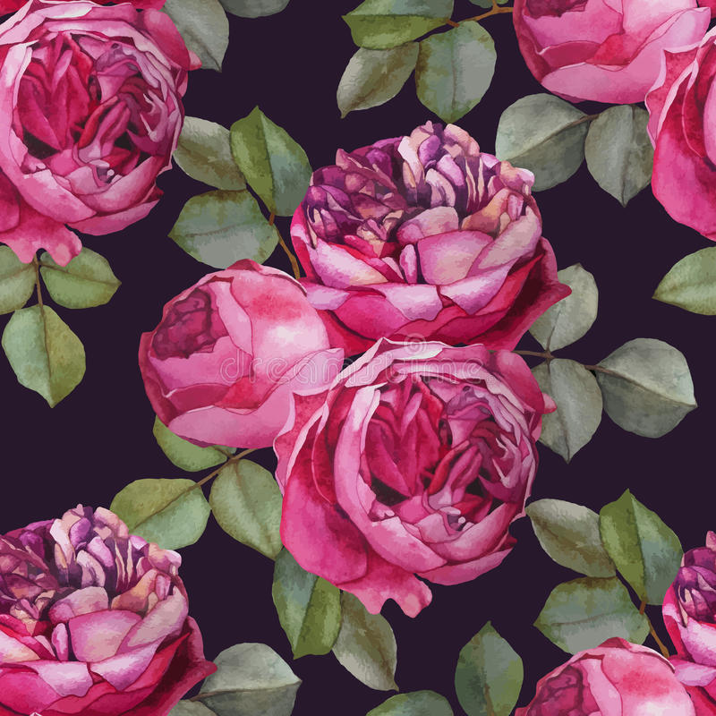 Vector floral seamless pattern with watercolor pink roses. royalty free illustration