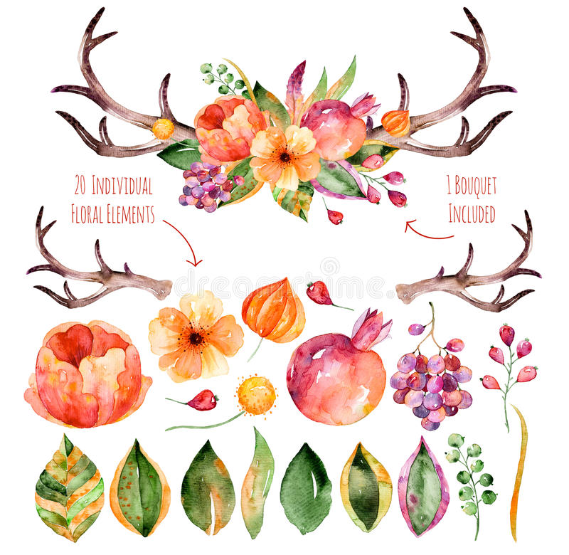 Vector floral set. Colorful purple floral collection with leaves, horns and flowers, drawing watercolor+colorful floral bouquet wi. Th leaves, horns and flowers stock illustration