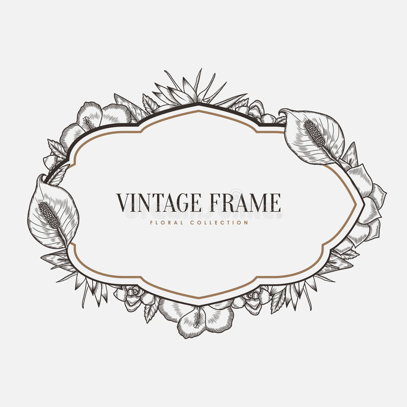 Vector Floral Vintage Frame. Retro Style Graphic Stock Vector ...