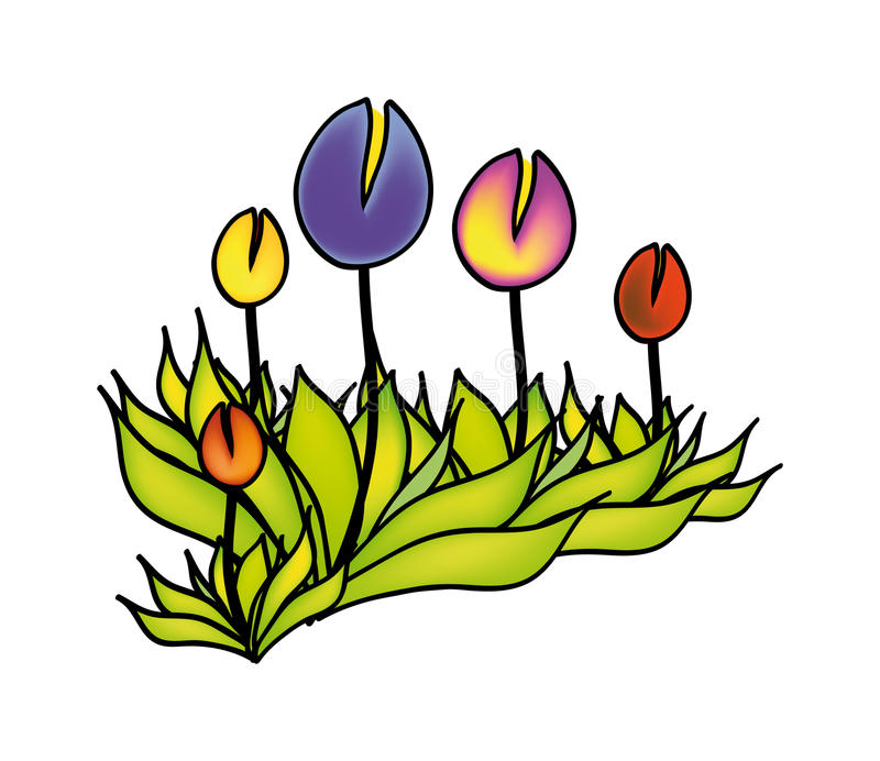 Download Vector flower stock illustration. Image of drawing, freshness - 12072577