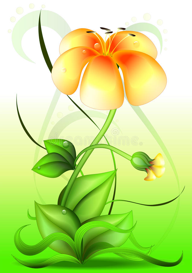 Download Vector flower stock vector. Illustration of button, bloom - 20244319