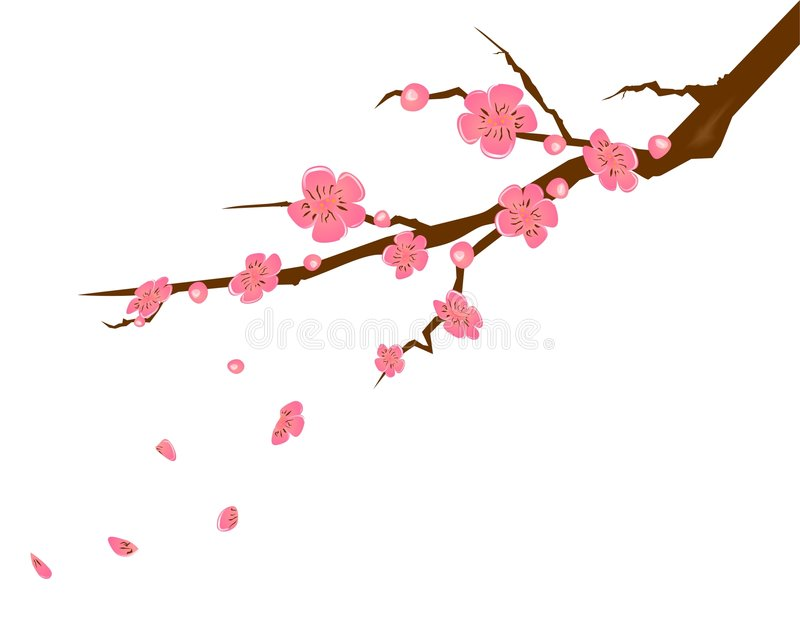 Download Vector Flower stock vector. Illustration of background - 6539700