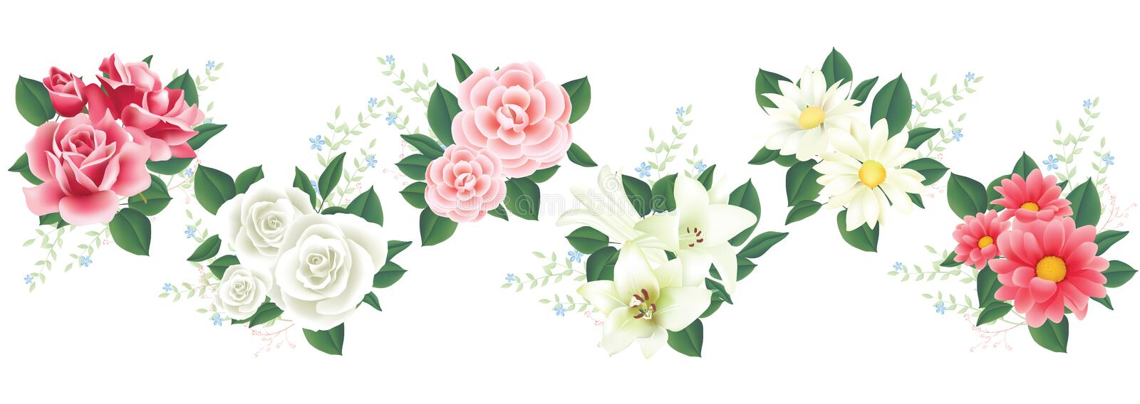 Vector Flower with lily, rose for design stock illustration