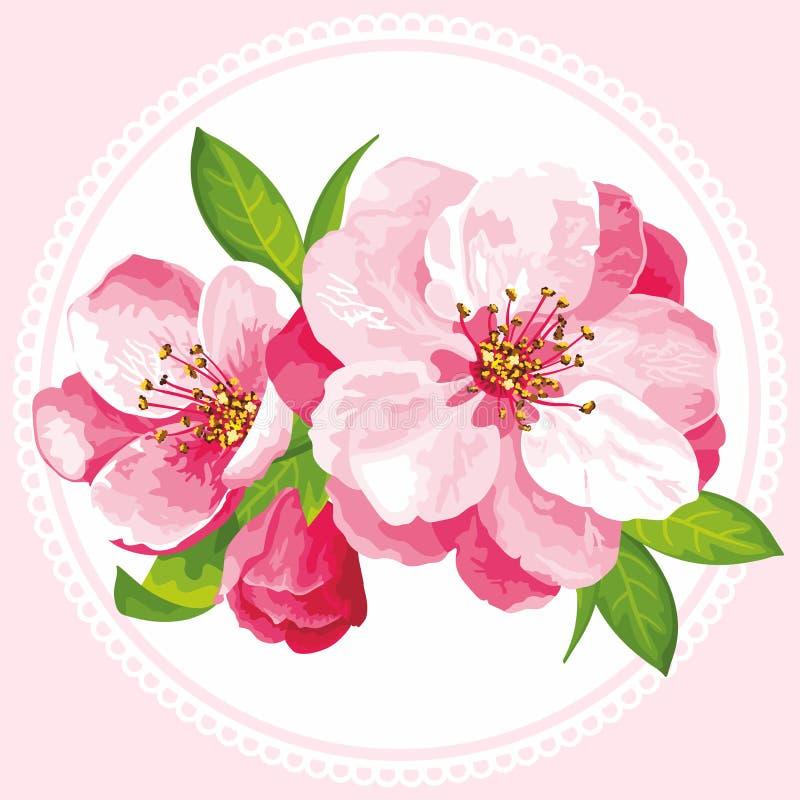 Vector flower of Sakura blossom royalty free stock photo