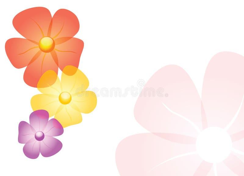 Vector flowers. On white background stock illustration