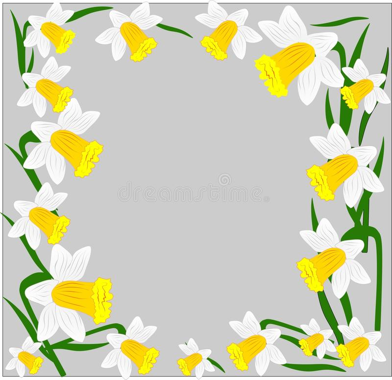 Vector, flowers, daffodils, a variety of early flowers beauty, love, tenderness stock photos