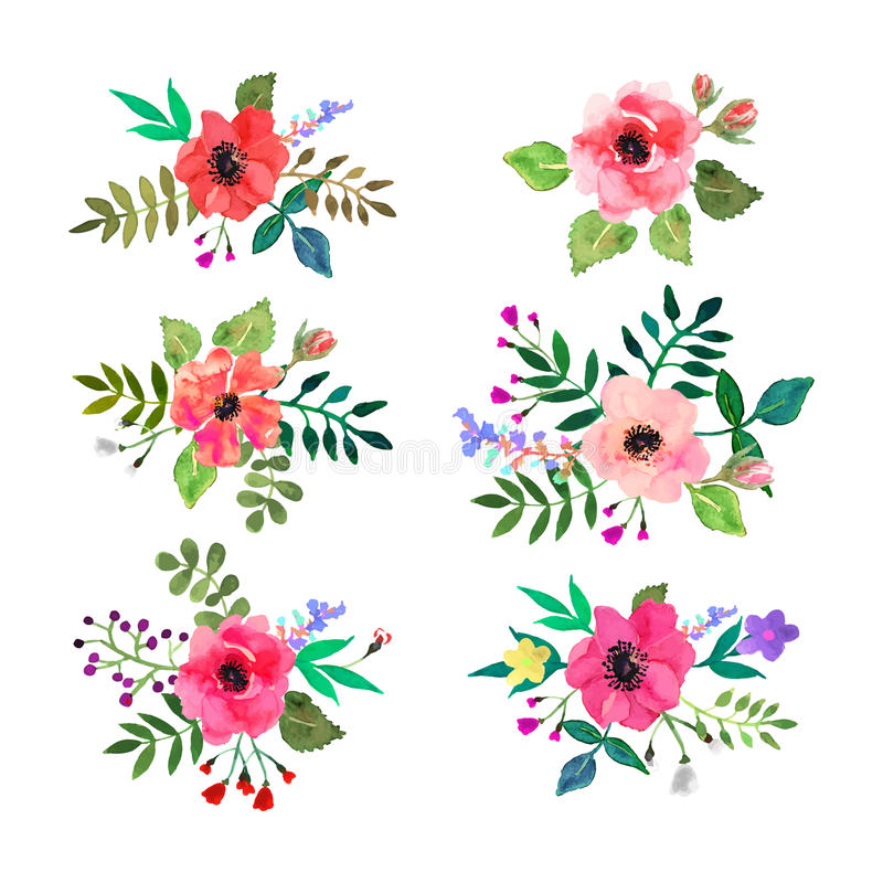 Vector flowers set. Colorful floral collection with leaves and f stock images