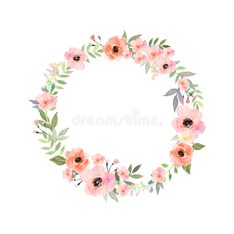 Vector flowers set. Elegant floral collection with leav royalty free stock images
