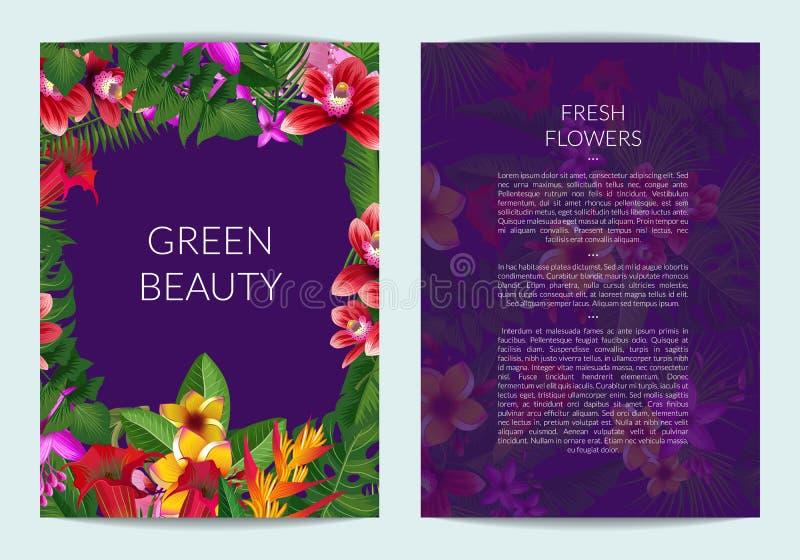 Vector folhas de palmeira tropicais e o molde exótico do negócio dos elementos da flor ilustração stock