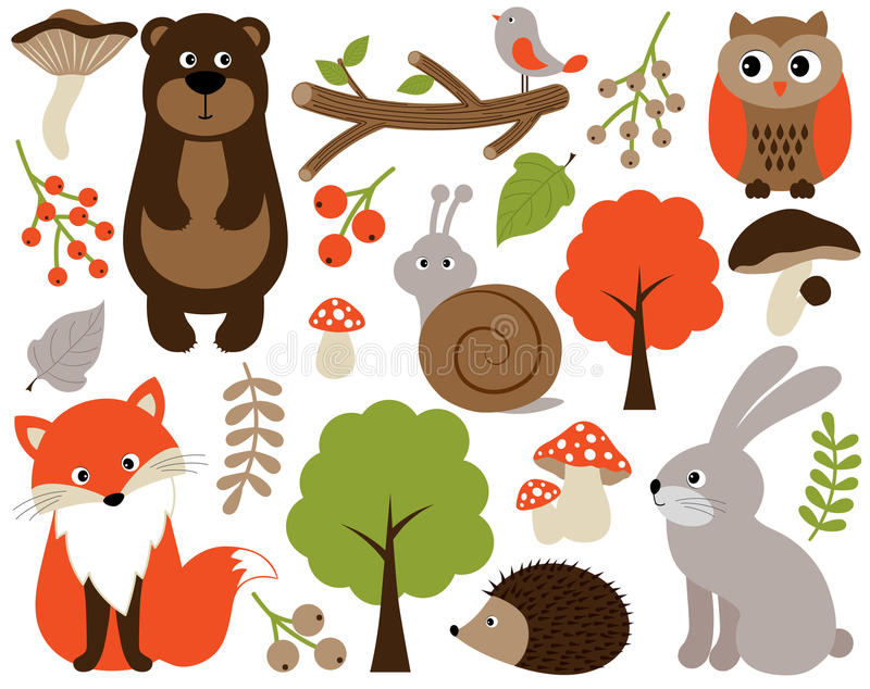 Vector Forest Animals Set. Vector Woodland Animals. Forest Animals Vector Illustration. stock illustration