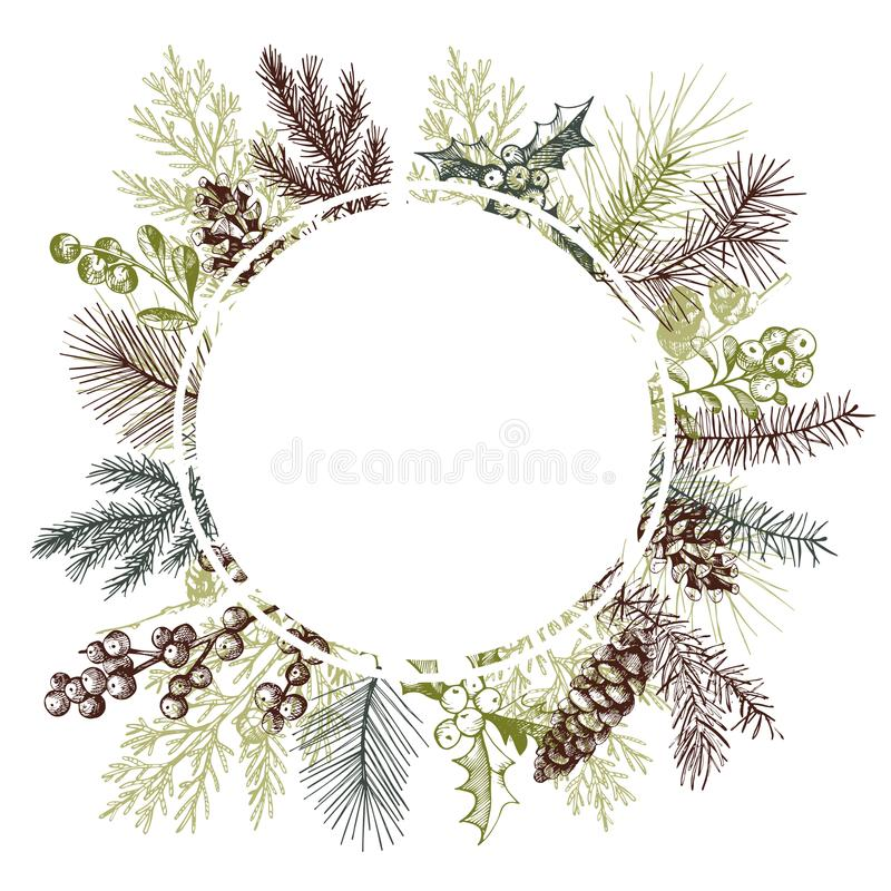 Vector frame with hand drawn Christmas plants stock illustration