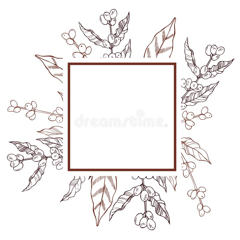 Vector frame with hand drawn coffee plants. stock illustration