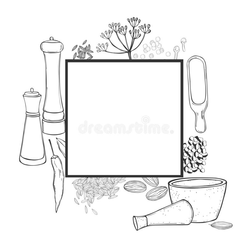 Vector frame with spices and herbs. royalty free illustration