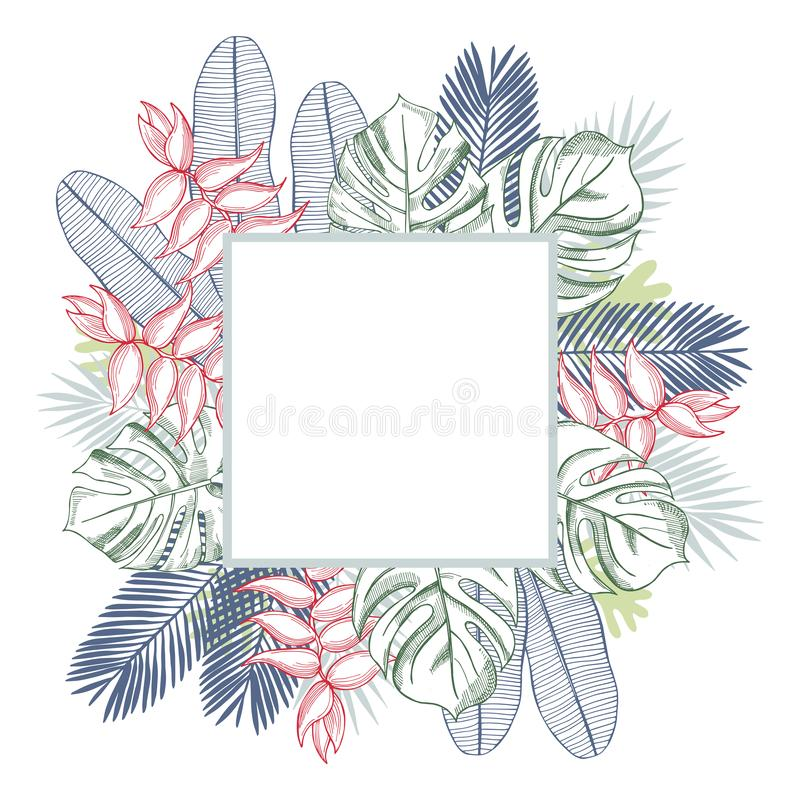 Vector frame with tropical plants. royalty free illustration