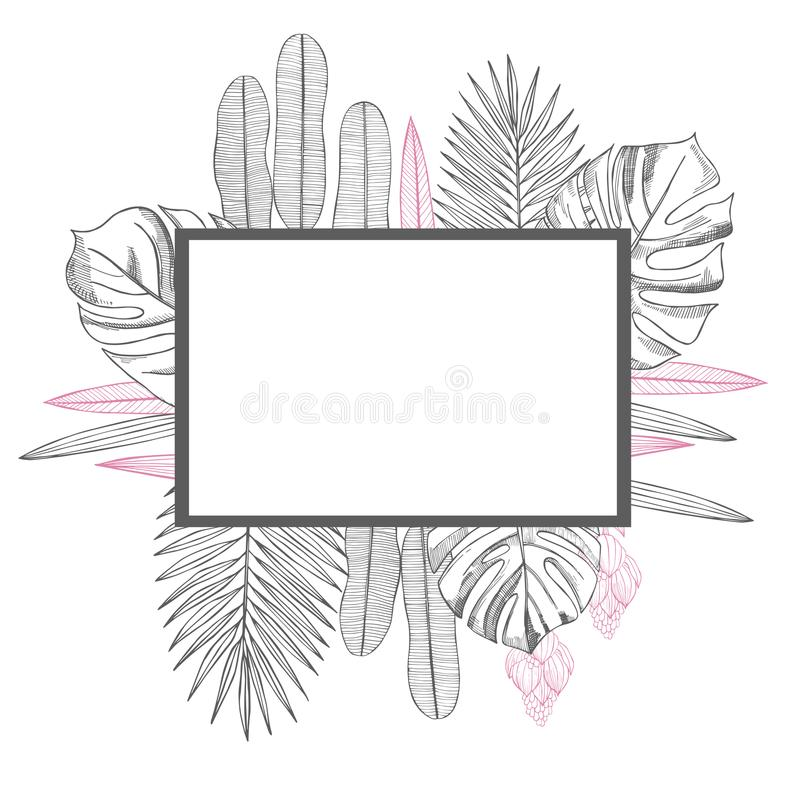 Vector frame with Hand drawn tropical plants. vector illustration