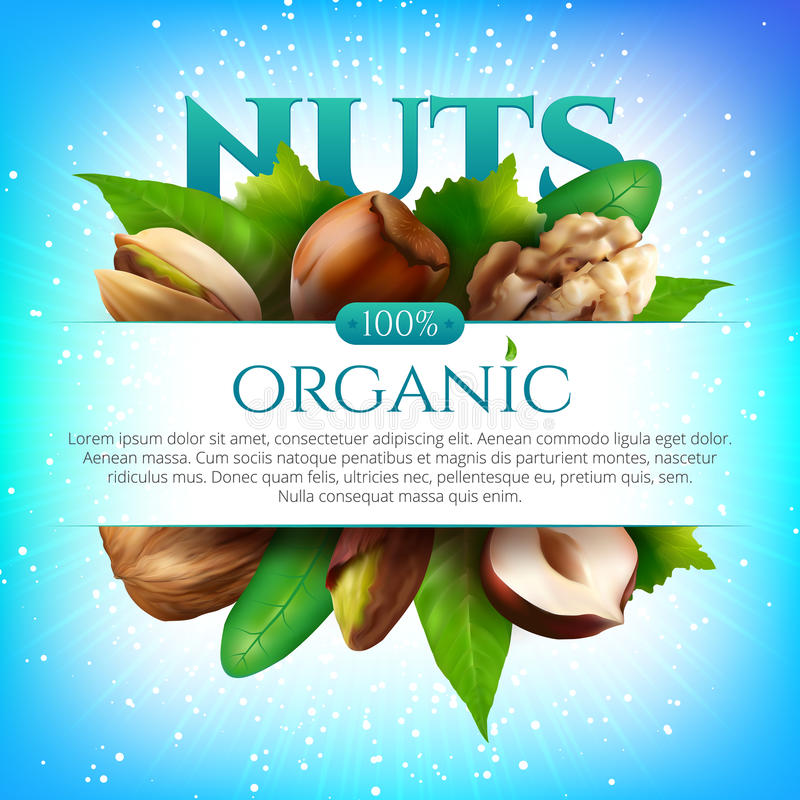 Vector frame of realistic nuts with leaves on colorful background stock illustration