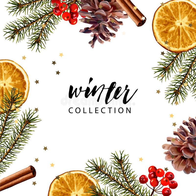 Vector frame template. Fir branches, dry orange slice, pine cone, cinnamon stick. Seasonal winter wallpaper stock illustration