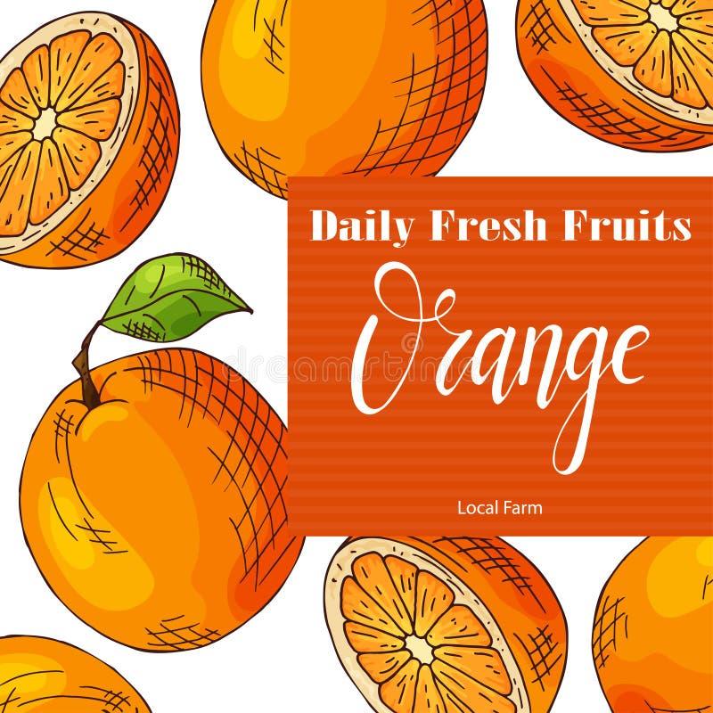 Vector fruit element of orange. Hand drawn icon with lettering. Food illustration for cafe, market, menu design royalty free illustration