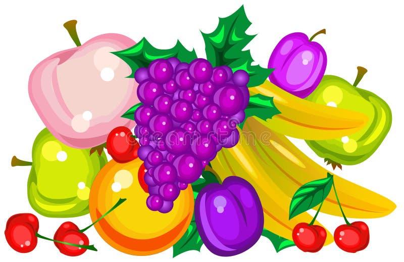 Vector fruits vector illustration
