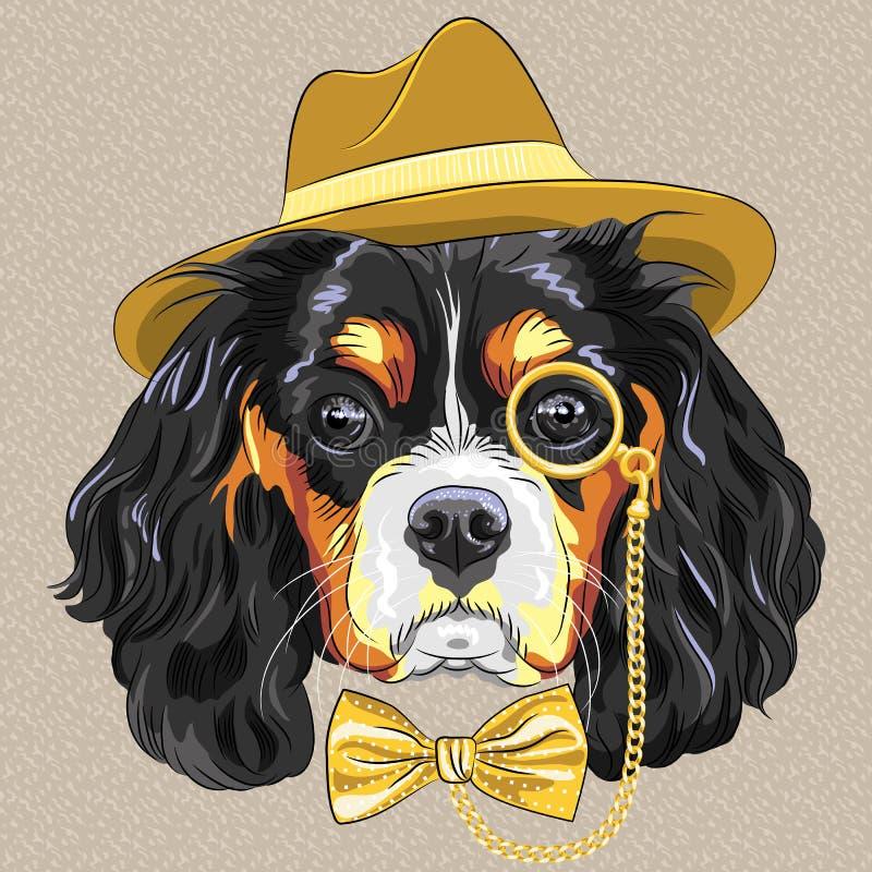 Vector funny cartoon hipster dog King Charles Span vector illustration