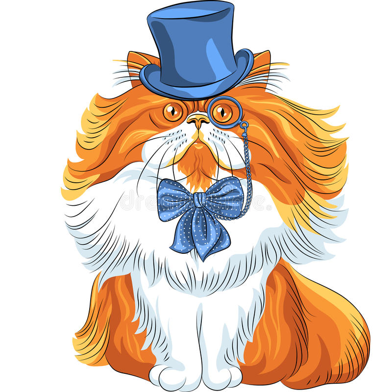 Vector funny cartoon hipster Persian cat stock images