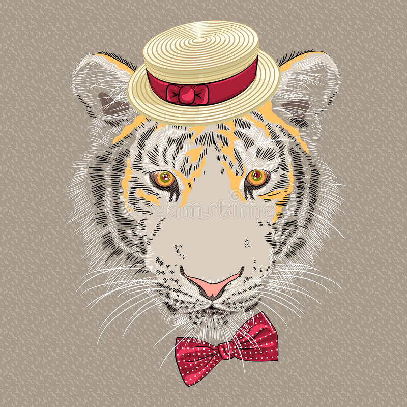 Vector funny cartoon hipster tiger stock images