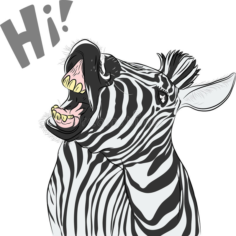 Vector funny cartoon zebra yells something stock images