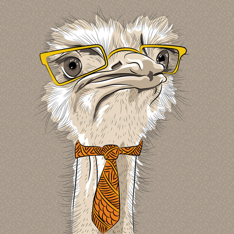 Vector funny Ostrich Bird hipster stock photography