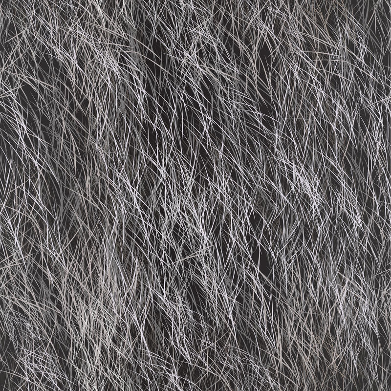 Vector Fur Seamless Pattern. Grey Background. royalty free stock photo