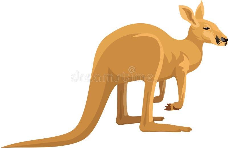 Vector geïsoleerde kangoeroe royalty-vrije illustratie