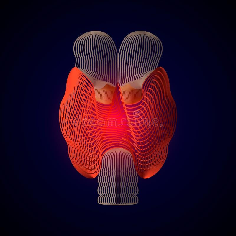 Vector geïsoleerde Schildklier met pijncentrum 3D menselijk orgaan Geneeskundeconcept met lijn vectorillustratie van Schildklier royalty-vrije illustratie