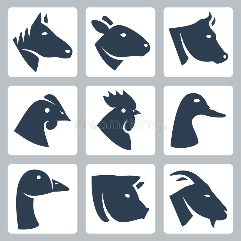 Vector geacclimatiseerde geplaatste dierenpictogrammen vector illustratie