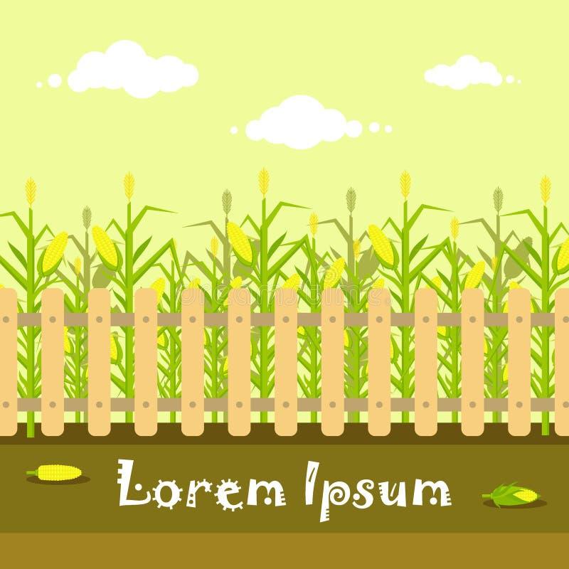 Vector gelbes Getreidefeld mit Zaun in der flachen Art lizenzfreie abbildung