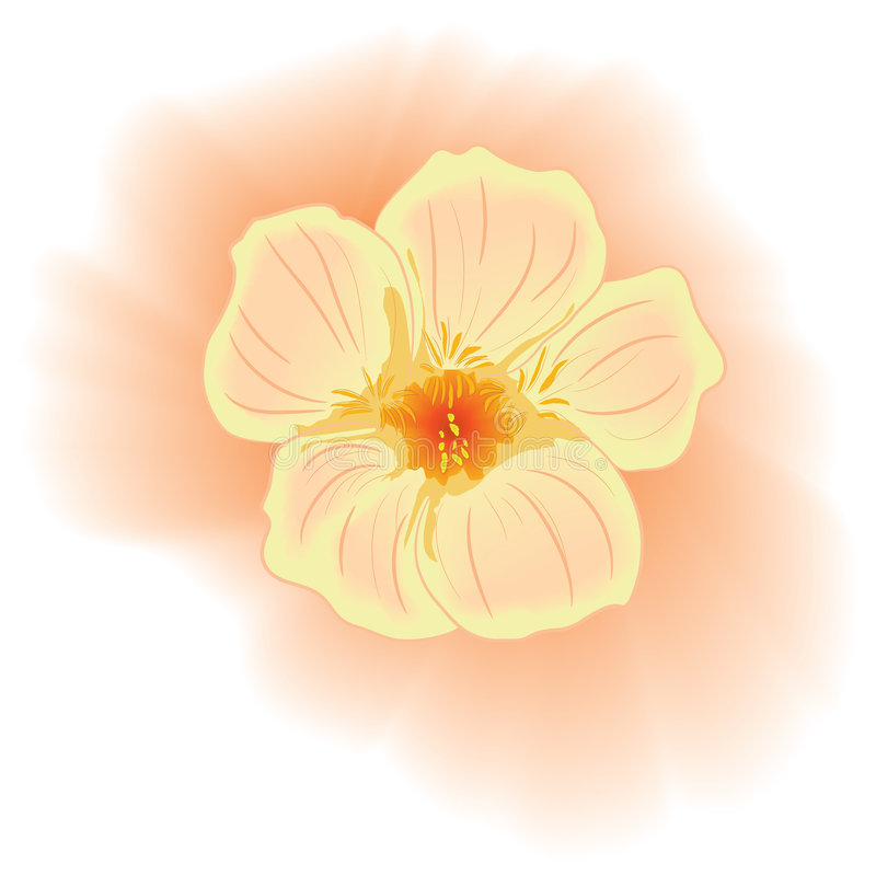 Download Vector Gentle Pink Flower. Watercolour Style Royalty Free Stock Photo - Image: 8591355