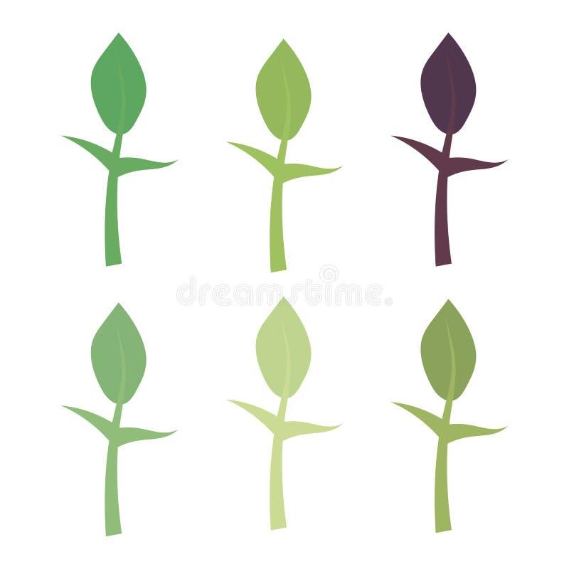 Vector geschilderde die kiem met stam en blad op witte achtergrond wordt geïsoleerd stock illustratie