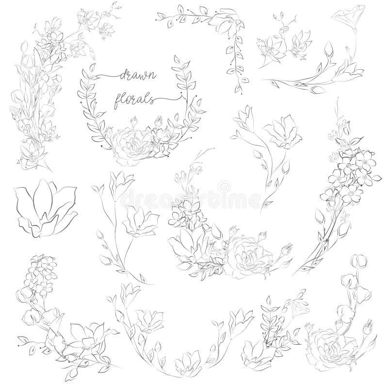 Vector Getrokken Installaties en Bloemen, Kronen, Hoeken, Takken royalty-vrije illustratie