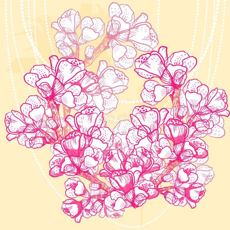Vector gevoelige de lentebloem op achtergrond stock illustratie
